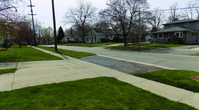 Residents feel the impact of DTE Energy tree removal project